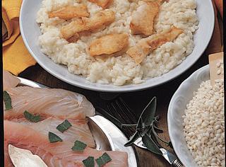 Risotto con il pesce persico
