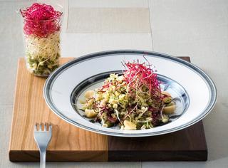 Quinoa con broccoli, zenzero e germogli