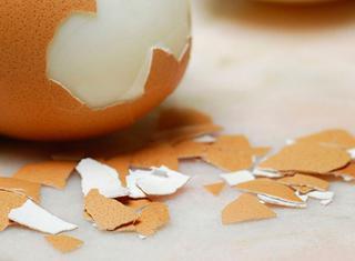 Uovo sodo al microonde