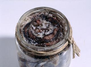 Acciughe conservate sotto sale