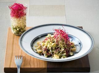 Insalata di quinoa e germogli