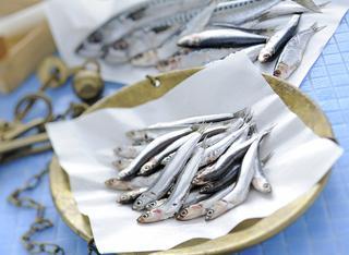 Come pulire e sfilettare il pesce