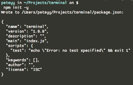 npm init -y in terminal for NodeJS developers