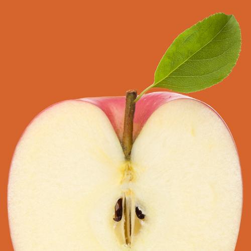 Apple 500px 500px