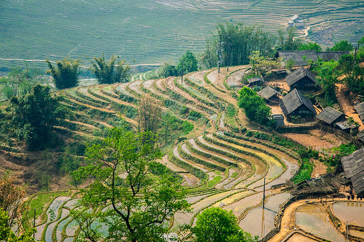 sapa vietnam photos