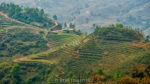 sapa rice fields vietnam by rob hemphill