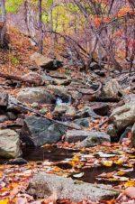 creek near wintergreen