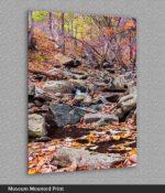 print of creek near wintergreen