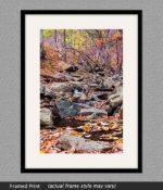 framed print of creek near wintergreen