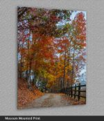 virginia fall colors print