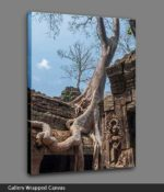 angkor wat trees canvas