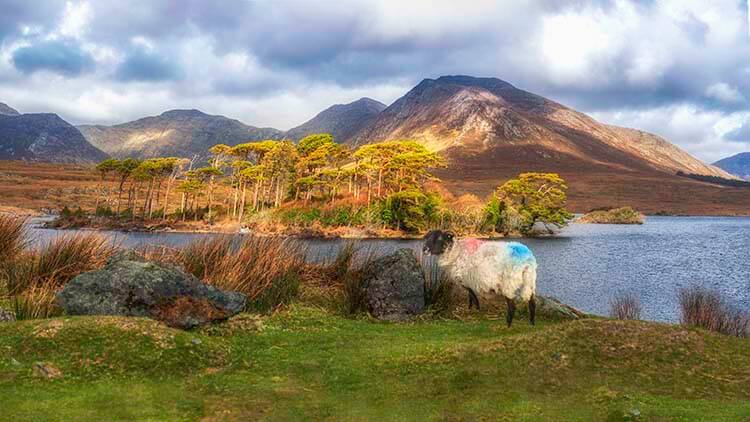 irish landscape pictures