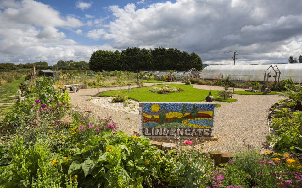 Garden with polytunnel, lawn and mosaic sign reading Lindengate