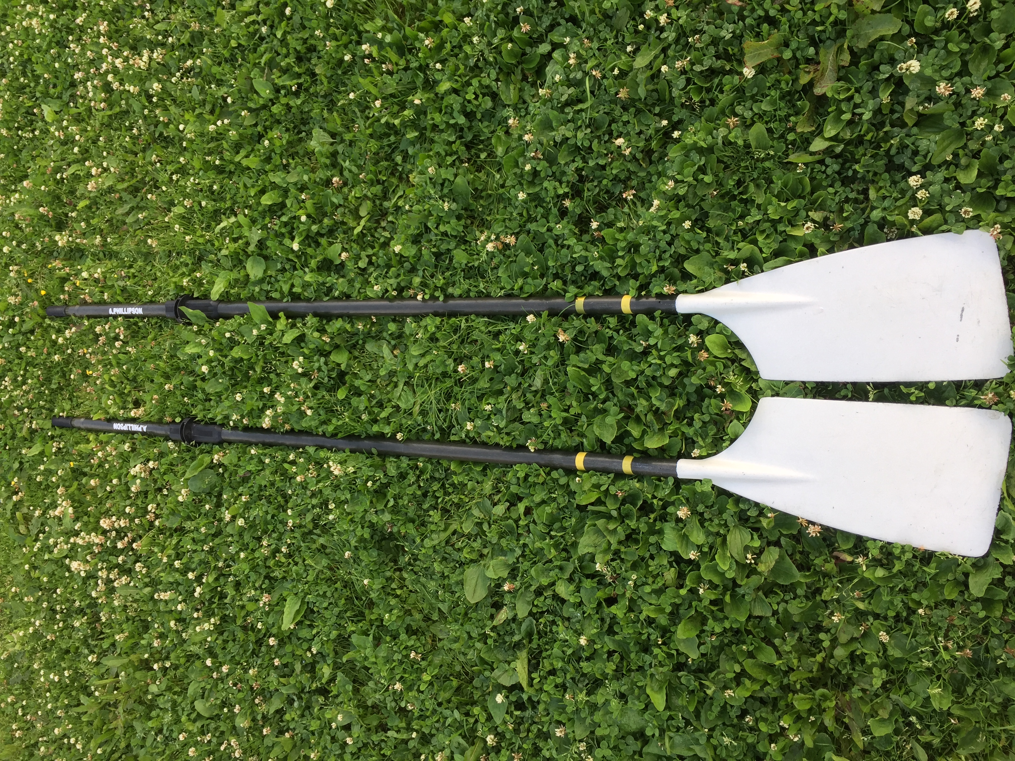 Dreher sculls for sale