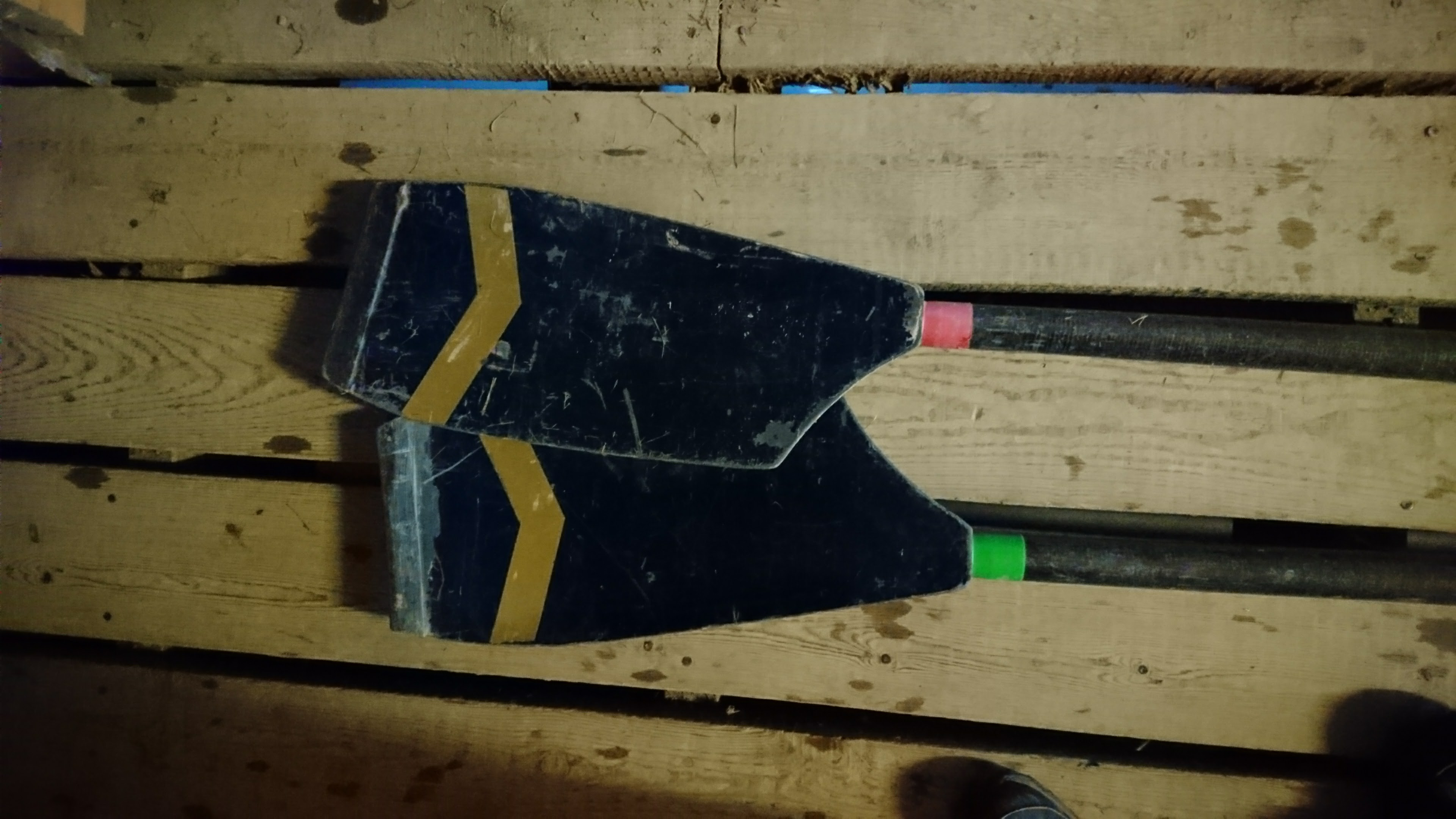 Used sculls wanted - Concept and Croker