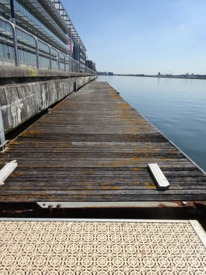 Rowing Pontoons For Sale