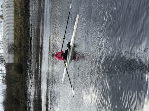 Single Scull for Sale