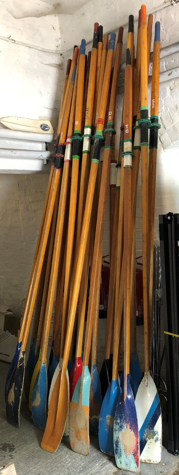 Wooden Sculling Blades For Sale