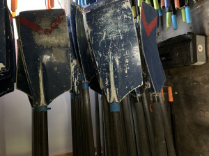 Various sets of sweep blades for sale, £100 per oar