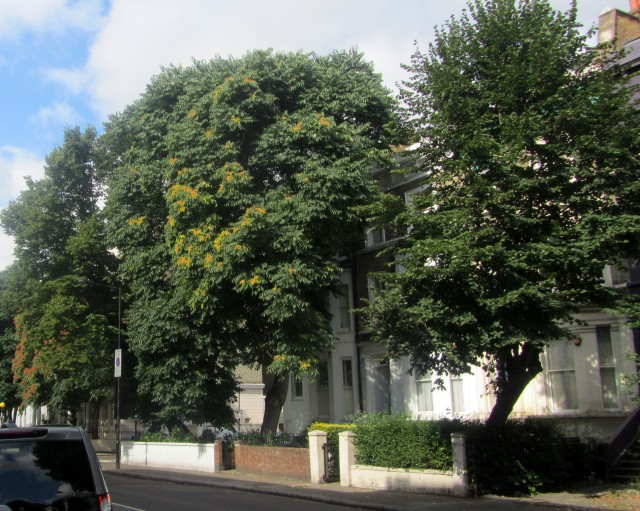 westbourne park road w11