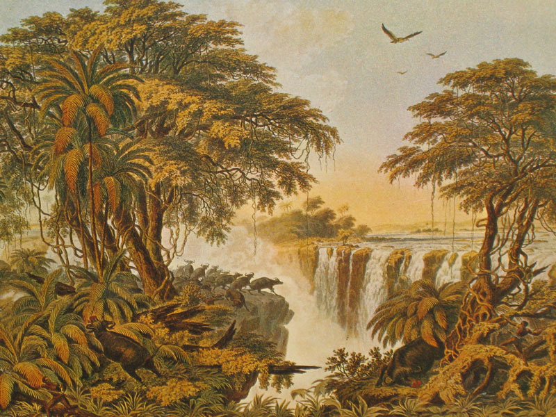 1469_o_prints_of_victoria_falls_and_the_zambezi