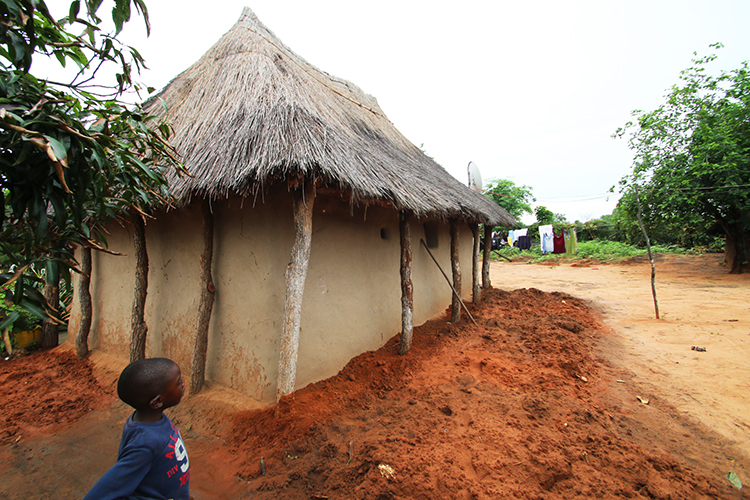 Mushekwa Village 20