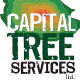 Capital Tree Services Ltd