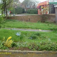 Garden Barlaston before