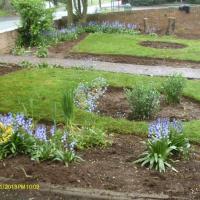 Garden Barlaston after