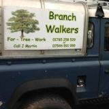 Branch Walkers For Tree Work
