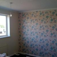 This a feature wall I put up as 