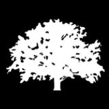Round Oak Interiors Ltd