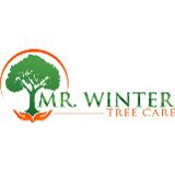 Oakwood tree care