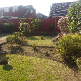 Mosslands trees and gardening