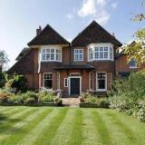 Norwich Gardening