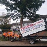 premier tree services
