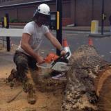 Arboricultural Operatives