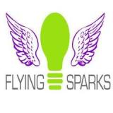 Flying Sparks Ltd
