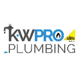 pro plumbing