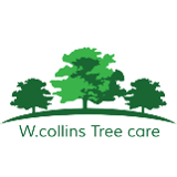 W.collins Tree care