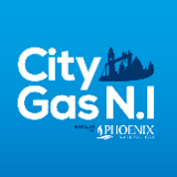 City gas ni