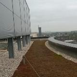 Pegasus Flat Roofing