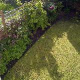 Tams Garden Service