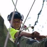 Soli-Tree Arborist