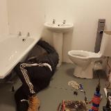 Boss Plumbing services