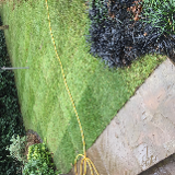 Aspect landscapes & tree care services