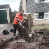 SOUTH BUCKS TREE SURGEONS