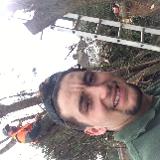 Tree & garden service
