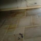 GZ Tiling