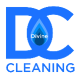 DIVINE CLEANING LTD
